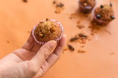 Insect foods in banana cupcakes stock images