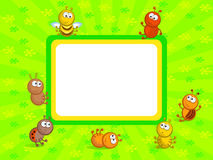 Insect frame Stock Photos
