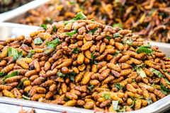 Insect fried food Royalty Free Stock Images