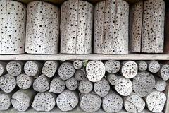 Insect hotel. Drilled roundwood as shelter for insects Stock Image