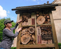 Insect hotel in garden. Insect hotel created from natural materials in garden Stock Images