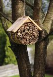 Insect hotel hanging in garden tree. Wooden bug hotel for insects hanging in garden tree royalty free stock images