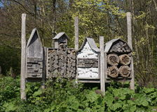 Insect hotel. For honey bees, bumblebees and other insects in the forest stock photo