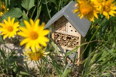 Insect hotel house in garden royalty free stock images