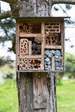 Insect Hotel Stock Image