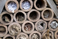 Insect hotel offering nest places. In clay pipes royalty free stock images