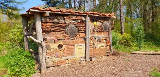 Insect hotel in the park royalty free stock photos