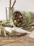 Insect hotel from tin cans, twigs and straw Stock Images