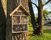 Insect hotels on garden trees Royalty Free Stock Image