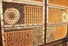 Insect house Royalty Free Stock Image