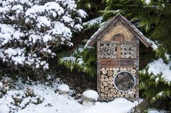 Insect house in winter royalty free stock image