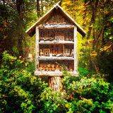 Insect house Royalty Free Stock Photography