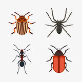 Insect icon flat isolated nature flying bugs beetle ant and wildlife spider grasshopper or mosquito cockroach animal Stock Images