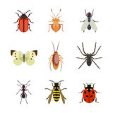 Insect icon flat isolated nature flying butterfly beetle ant and wildlife spider grasshopper or mosquito cockroach Royalty Free Stock Photo