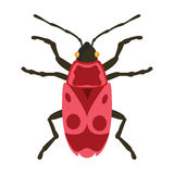 Insect icon flat isolated vector illustration. Stock Images