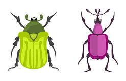 Insect icon flat isolated vector illustration. Stock Image