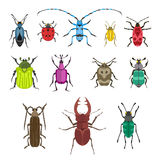 Insect icon flat isolated vector illustration. Royalty Free Stock Photo