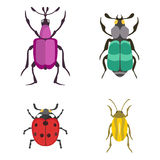 Insect icon flat isolated vector illustration. Stock Photos