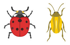 Insect icon flat isolated vector illustration. Stock Photography