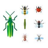 Insect icon flat set isolated on white background Stock Photo