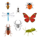 Insect icon set Stock Photos