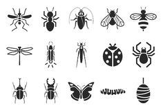 Insect icons. Flat Design Illustration: Insect icons Royalty Free Stock Photo