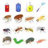 Insect icons set, cartoon style Stock Images