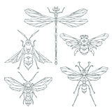 Insect icons, vector set. Abstract triangular style. bee, bumble bee , dragonfly, wasp. Vector illustration Royalty Free Stock Photos