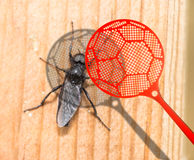Insect killer Royalty Free Stock Photos