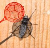 Insect killer Stock Photos