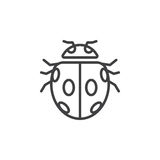 Insect, ladybird beetle line icon Stock Photos