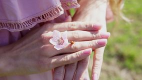 Insect Ladybird on the hands of woman with flower. 1 stock footage