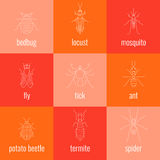 Insect line icon set Royalty Free Stock Photo