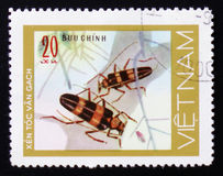 Insect long horn beetle bug, 20 coins, circa 1981 Royalty Free Stock Photos