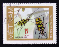 insect long horn beetle bug, 12 coins, circa 1981 Royalty Free Stock Photos
