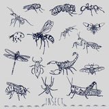 The insect marker sketch style hand drawing Royalty Free Stock Photos