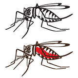 Insect Mosquito Aedes aegypti Royalty Free Stock Photos
