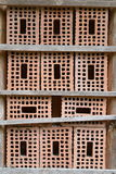 Insect nesting box Stock Images