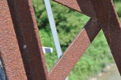 Insect op een balk stock afbeelding