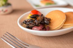 Insect pancake. Cricket insect, Corn, Red bean, Tomato with pancakes in a white bowl for breakfast. Close-up, Selective focus Stock Images