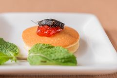 Insect pancake. Cricket insect with sweet strawberry jam on a pancake and mint leaf for breakfast. Close-up, Selective focus Stock Photos