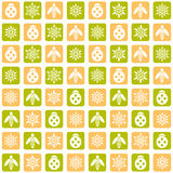 Insect pattern. Flower and insect sample. Squares pattern. Vector illustration Royalty Free Stock Photography