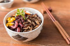 Insect and Rice Berry. Cricket insect, Corn, Red bean, Carrot, Cucumber with Rice Berry in a bowl. Healthy meal high protein diet concept. Close-up, Selective stock image