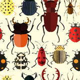 Insect Seamless pattern. Stock Photography