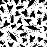 Insect seamless pattern Stock Images