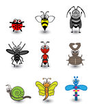 Insect Set Royalty Free Stock Photos