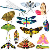 Insect set. Colorful low poly butterfly, moth, dragonfly designs on white background. Vector insects illustration Stock Photo