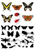 Insect silhouette& picture set Royalty Free Stock Images