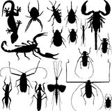 Insect silhouettes vector Stock Photos