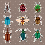 Insect stickers. Cartoon vector illustration Stock Photography